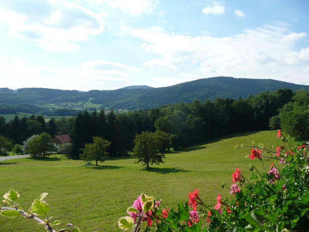 Ferienwohnung Hirtreiter (Lalling). 2**** 85qm (2662503), Lalling, Bayerischer Wald, Bayern, Deutschland, Bild 6