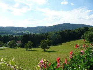 Panoramaaussicht / Rechteinhaber: © Ferienwohnung Hirtreiter