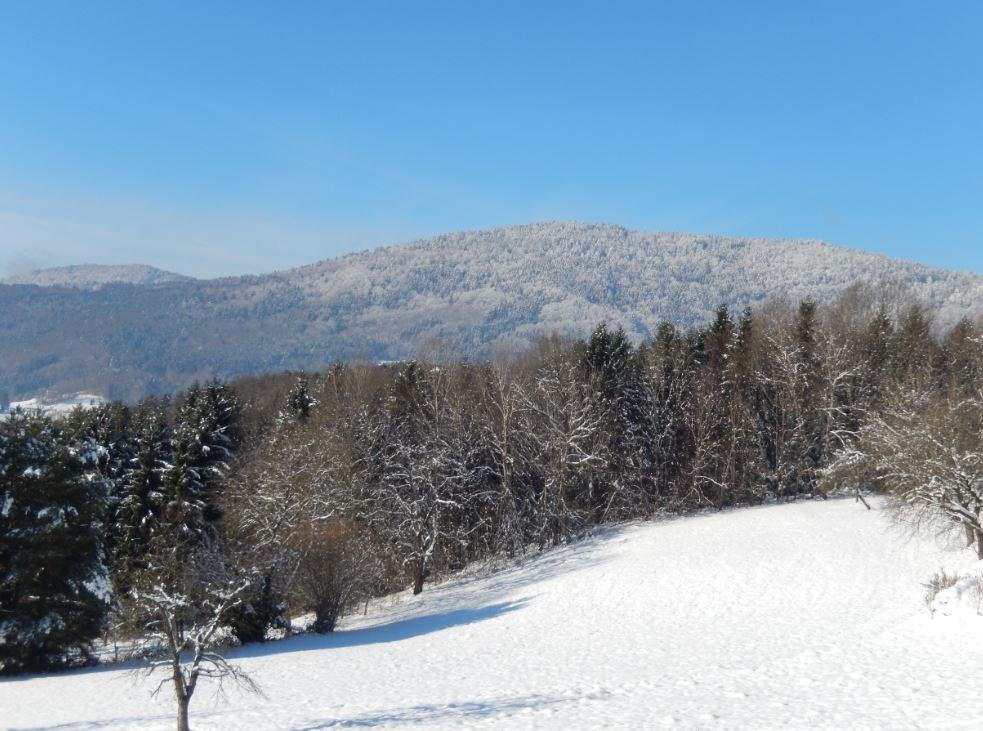 Ferienwohnung Hirtreiter (Lalling). 2**** 85qm (2662503), Lalling, Bayerischer Wald, Bayern, Deutschland, Bild 5
