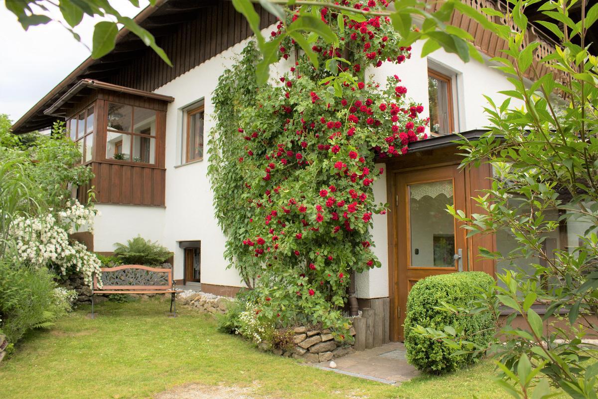 Ferienwohnung Fewo Konstandin (Bischofsmais). Ferienwohnung 2 (2662727), Bischofsmais, Bayerischer Wald, Bayern, Deutschland, Bild 4