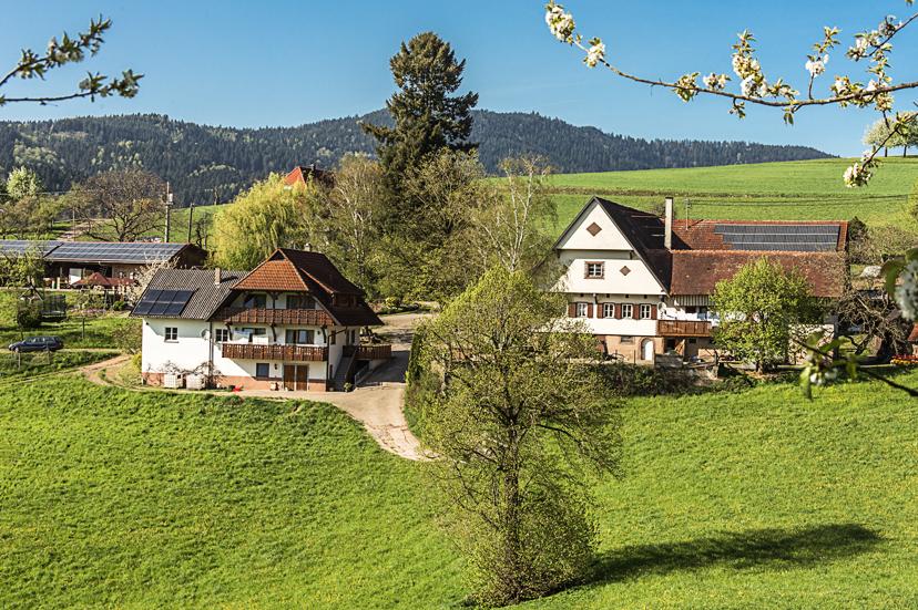 Breigenhof (Oberharmersbach). Leibgedinghaus Auerh Ferienwohnung  Schwarzwald