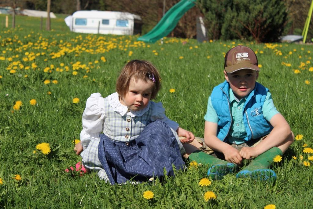Saftige Allgäuer Blumenwiese und glückliche Kinderaugen.