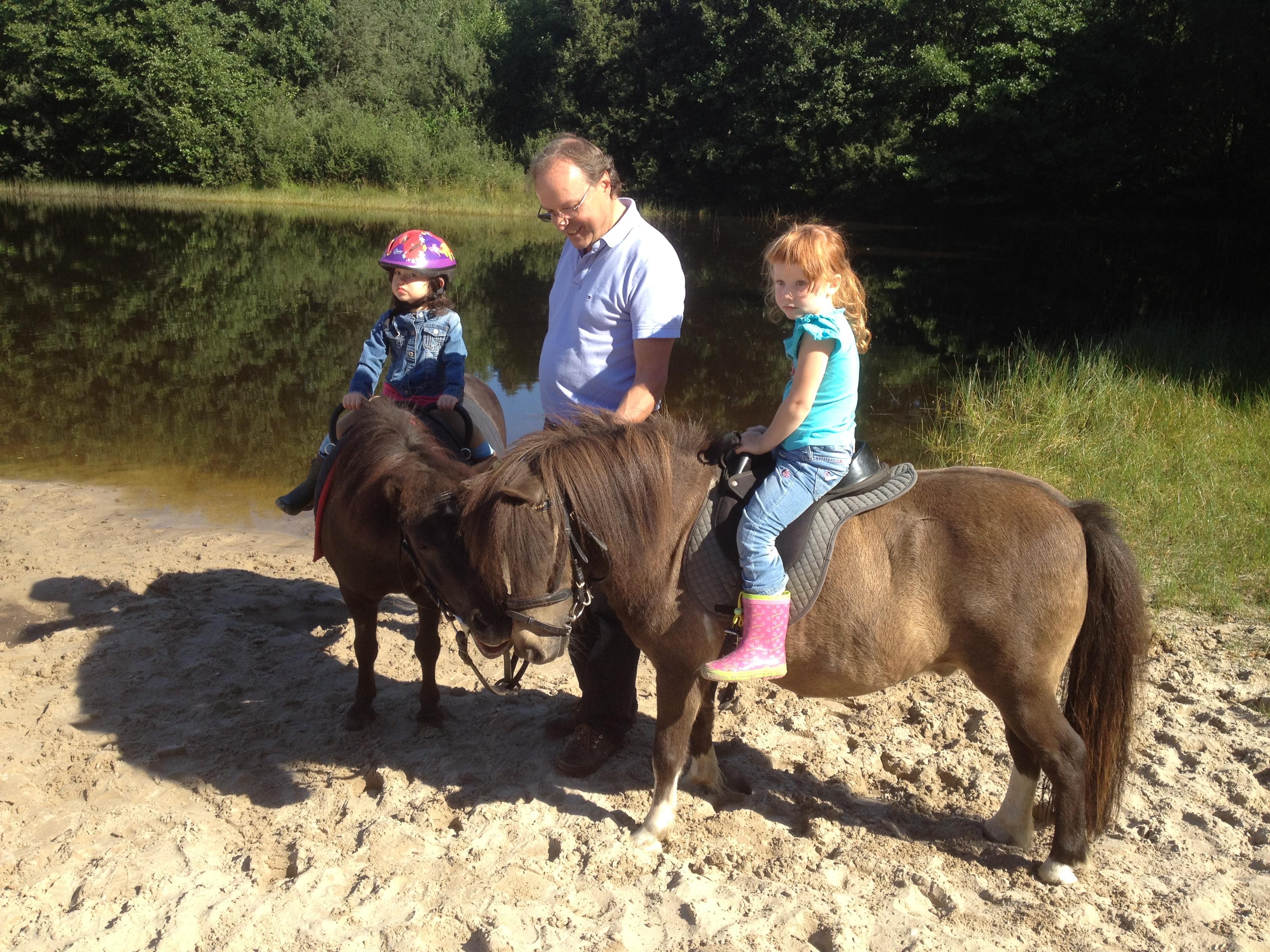 große und kleine Pferde warten auf junge Reiter, die alle nach ihren Fähigkeiten gefördert werden