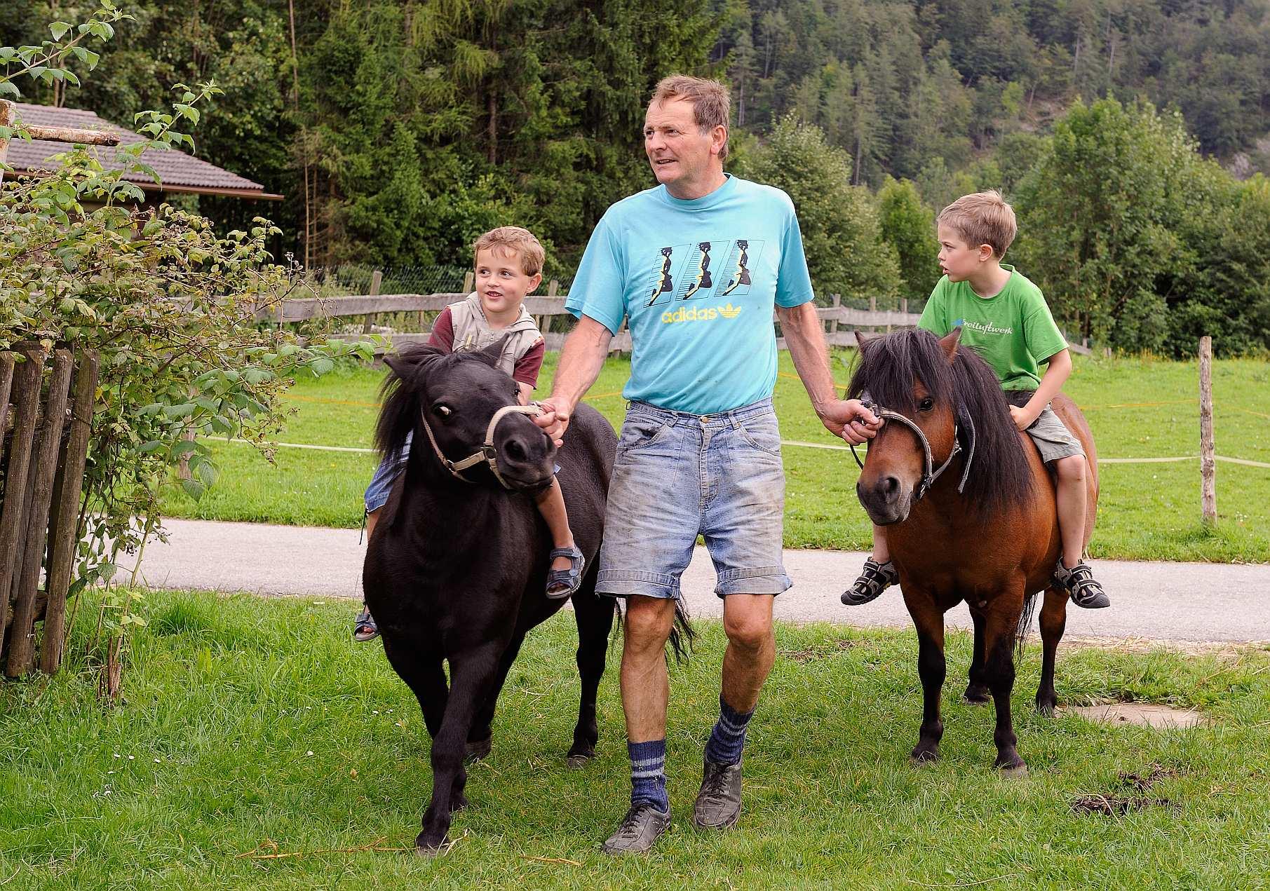 Ponys, Zwergziegen, Kälbchen, Kühe, Hühner, Hasen, Enten, Katzen.