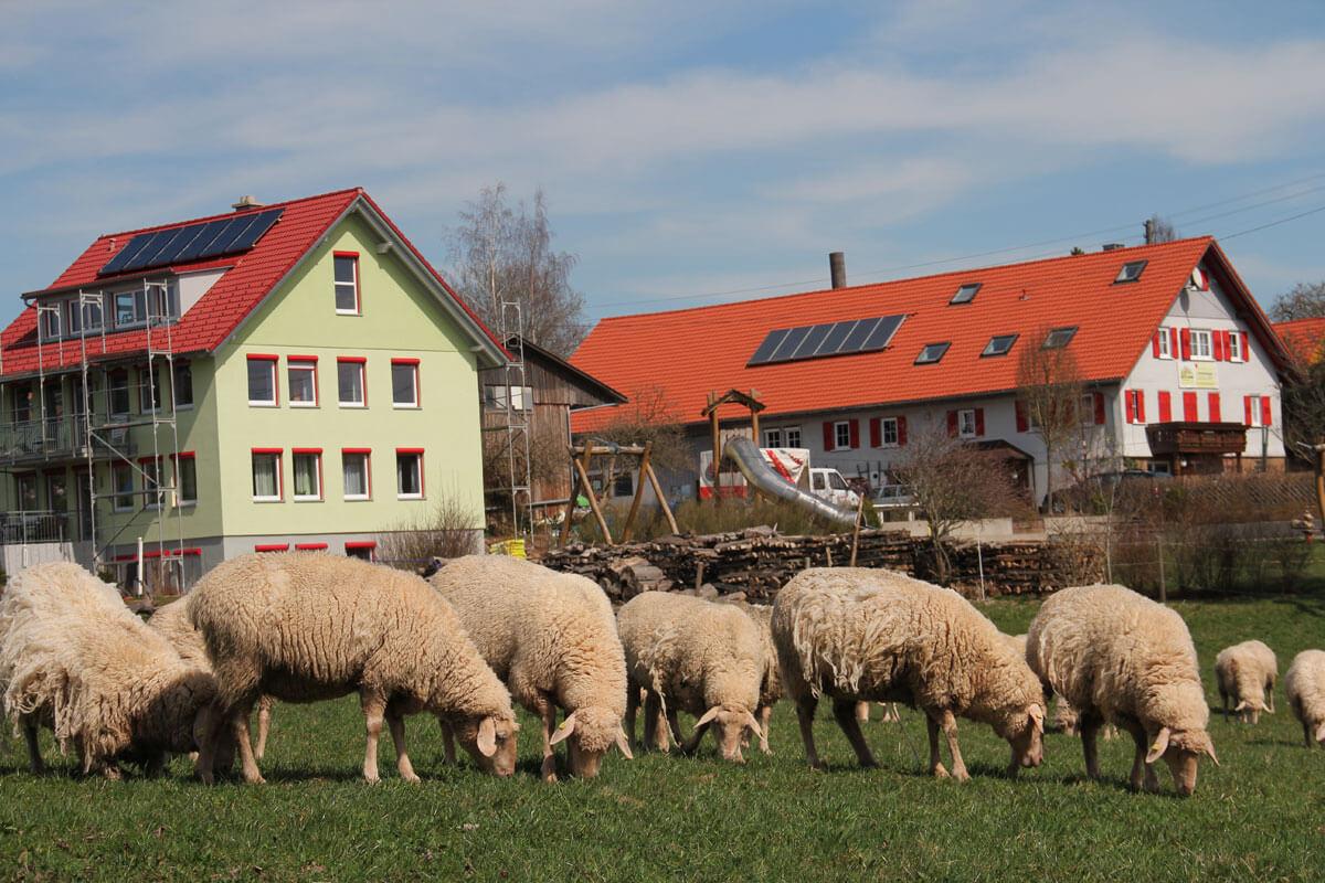 das grüne ist unser Gästehaus Hasengrund und weiter hinten das Bauernhaus