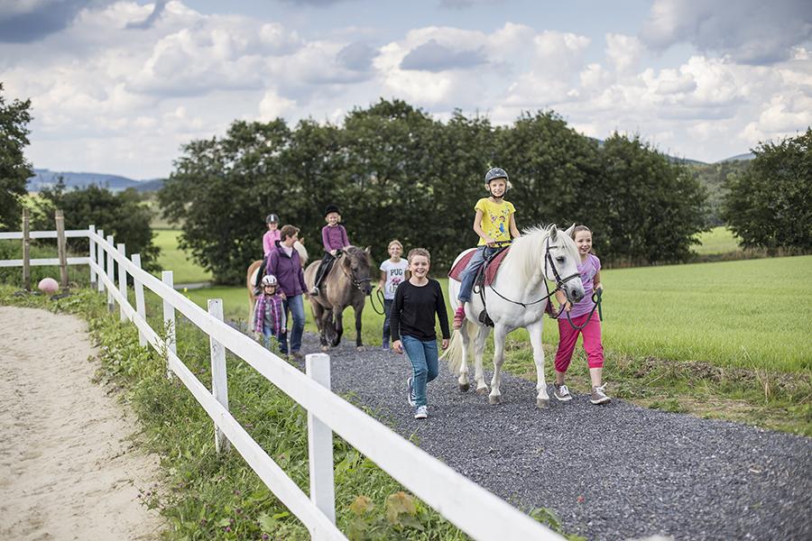kostenloses Ponyreiten auf dem Hardthof