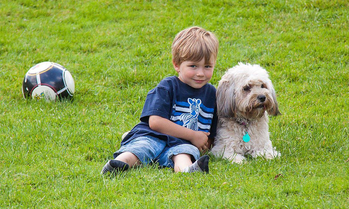 ist der Hund! Spielen und toben so viel man mag - da geht nicht nur den Kindern das Herz auf.