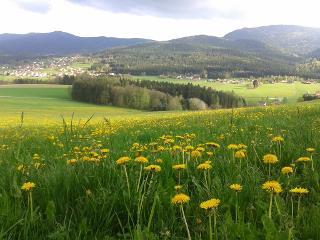 Traumhafter Ausblick auf Wiesen und Felder