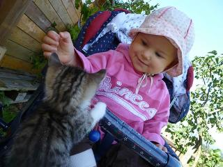 Kind spielt mit Katze