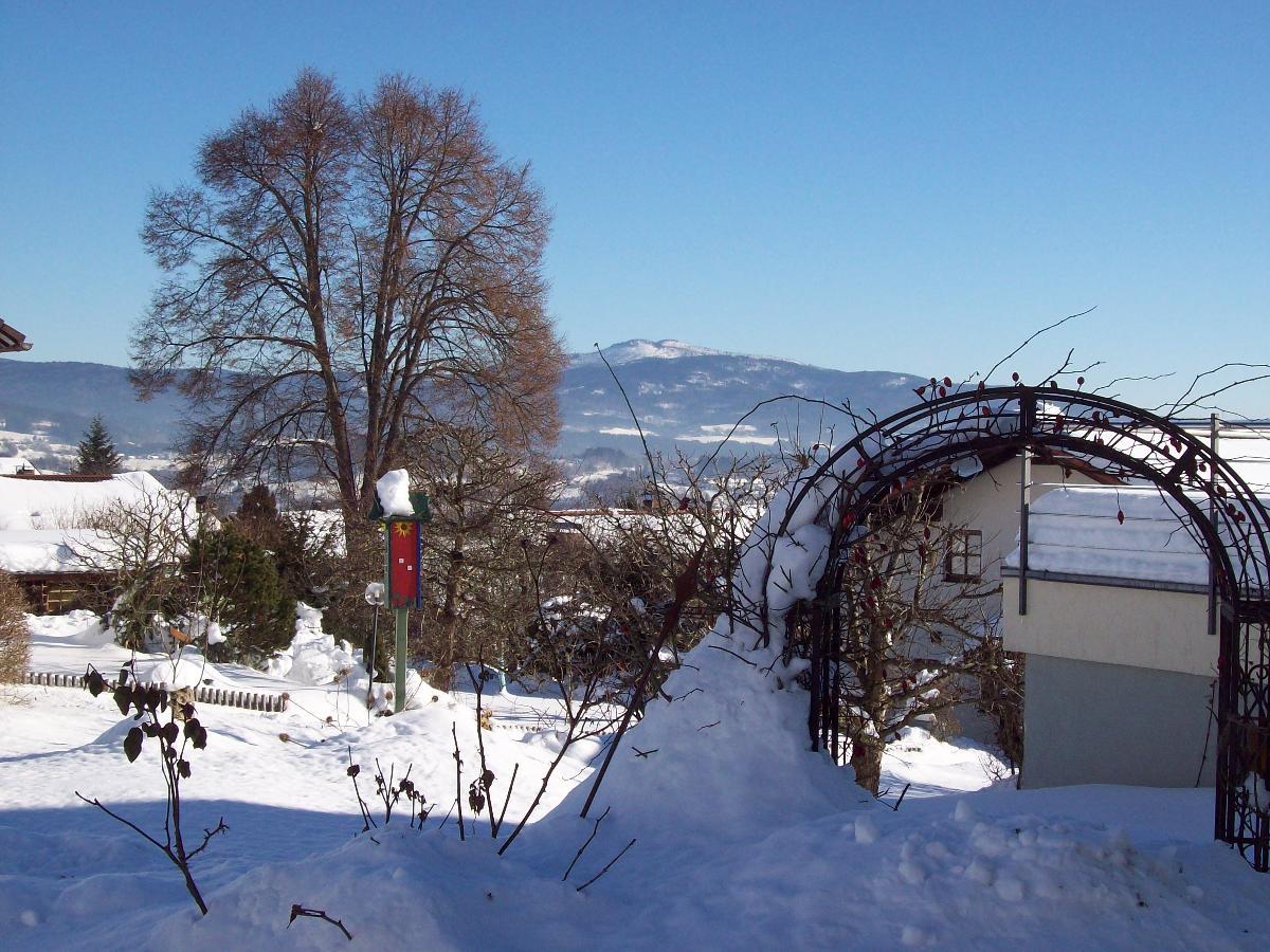 Haus Hollerbusch (Zwiesel). Ferienwohnung Falkenst Ferienwohnung