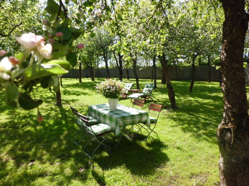 Ferienwohnung Obstgartenträume (Freyung). Apfelblüte (732809), Freyung, Bayerischer Wald, Bayern, Deutschland, Bild 1