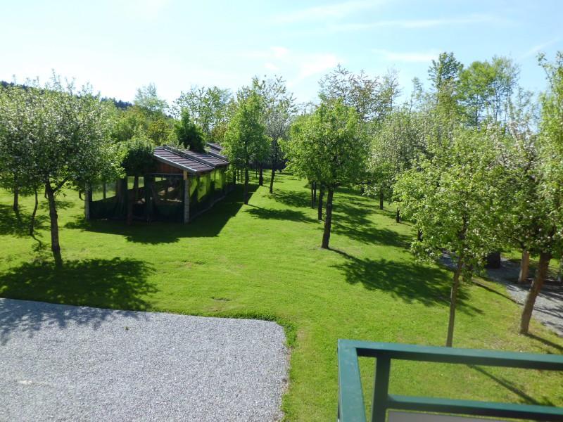 Ferienwohnung Obstgartenträume (Freyung). Apfelblüte (732809), Freyung, Bayerischer Wald, Bayern, Deutschland, Bild 5