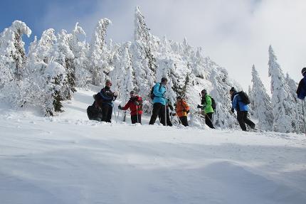 Arbermanderl -Schneeschuh-Tour