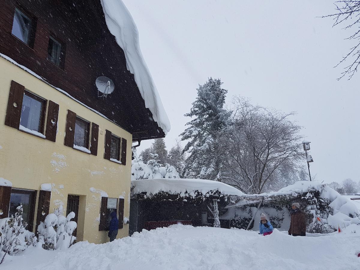 Ferienwohnung 2 Ferienappartements mit Herz (Bischofsmais). Ferienwohnung A (2663119), Bischofsmais, Bayerischer Wald, Bayern, Deutschland, Bild 37