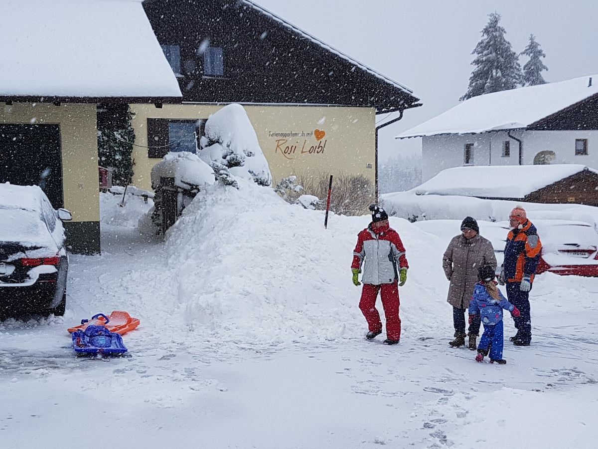 Ferienwohnung 2 Ferienappartements mit Herz (Bischofsmais). Ferienwohnung A (2663119), Bischofsmais, Bayerischer Wald, Bayern, Deutschland, Bild 36