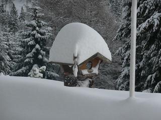 Winterspecial / Urheber: A. Galhofer / Rechteinhaber: © A. Galhofer