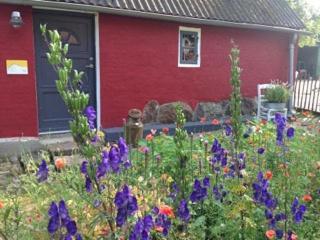 Rotes Haus mit Garten, Room 24, U. Tetzlaff
