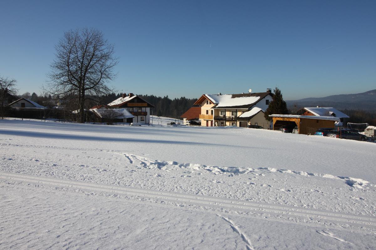 Ferienwohnung Gästehaus Schreiner (Sankt Oswald). Doppelzimmer 3 (1872860), St Oswald, Bayerischer Wald, Bayern, Deutschland, Bild 17
