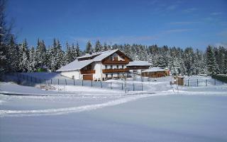 Winterliches Haus Spannbauer - Im Winter lädt Altreichenau zu Langlauf, Rodeln und Abfahrtsski ein, zu Schneeschuhgehen und Skaten.