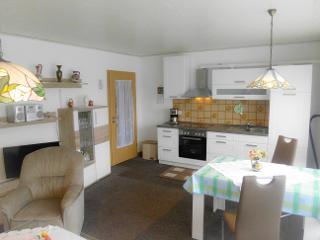 Wohnküche mit kompletter Küchenzeile
