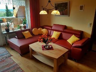Bequeme Leder-Wohnlandschaft im Wohnzimmer mit zusätzlicher Schlafmöglichkeit