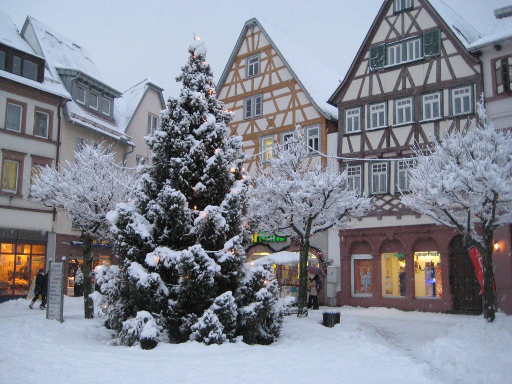 Ferienwohnung Münch (Tauberbischofsheim). Münch (2710382), Tauberbischofsheim, Taubertal, Baden-Württemberg, Deutschland, Bild 16
