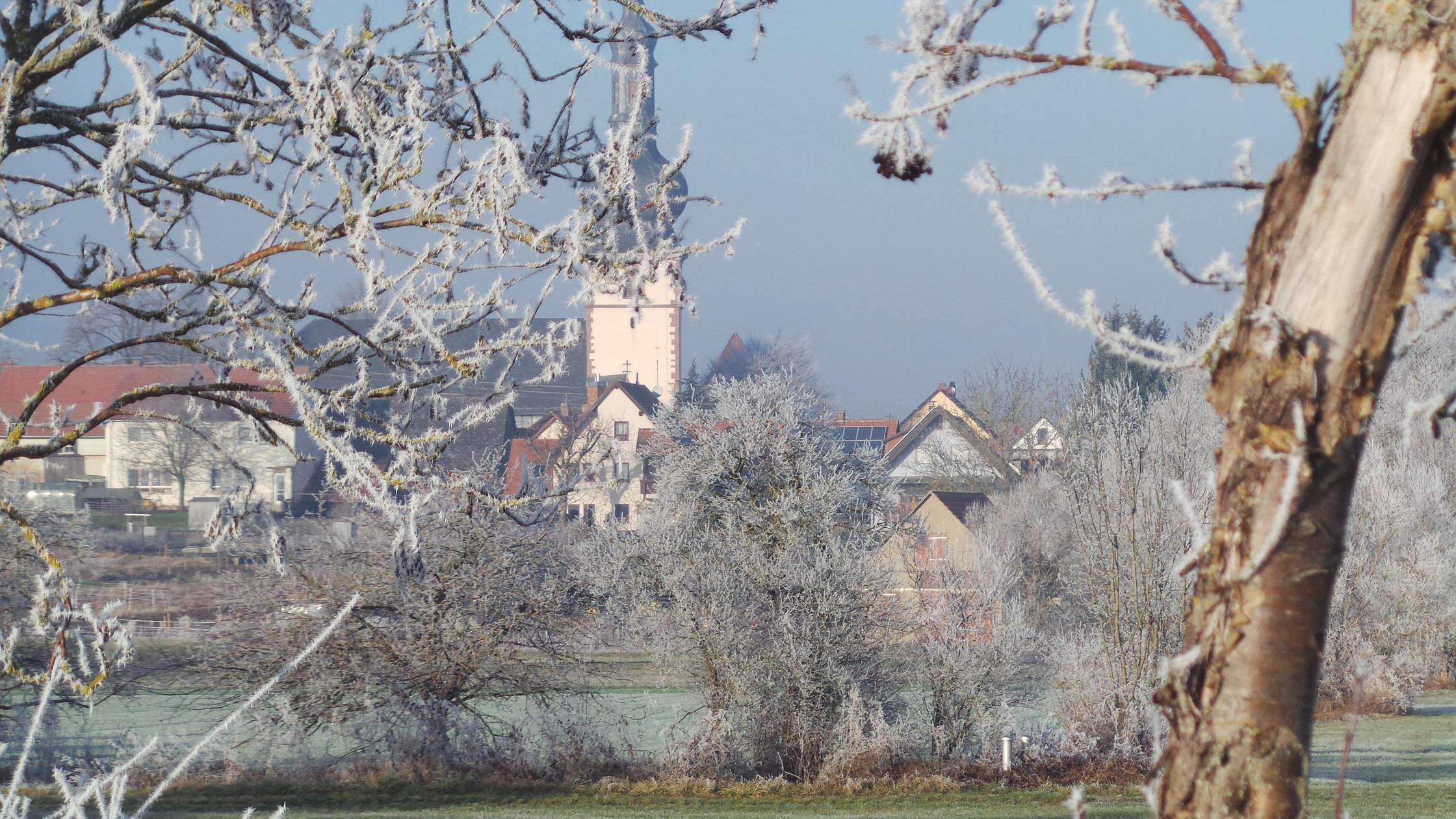 Ferienwohnung Münch (Tauberbischofsheim). Münch (2710382), Tauberbischofsheim, Taubertal, Baden-Württemberg, Deutschland, Bild 14