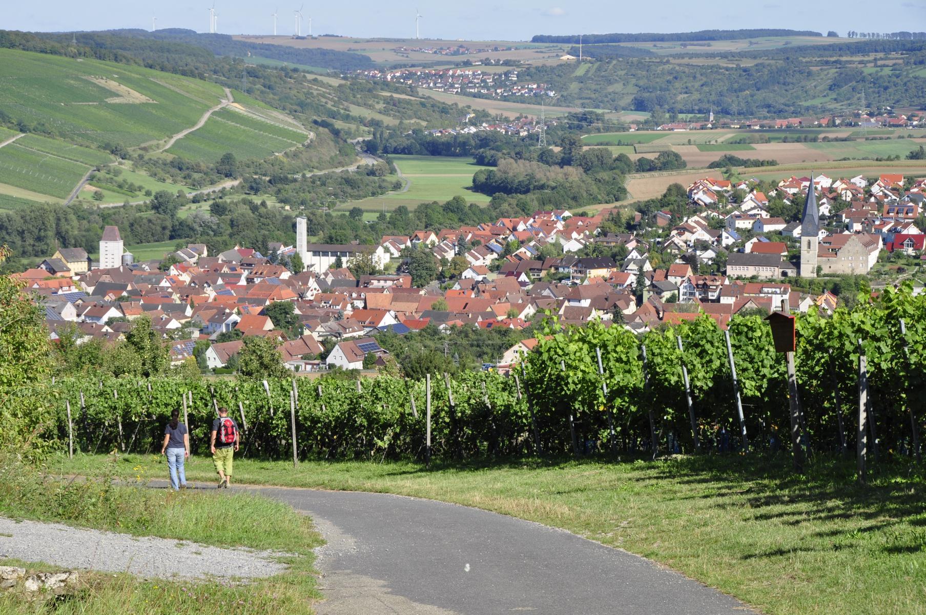 Weinlehrpfad Weinort Markelsheim