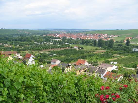 Ferien- und Winzerhof Ute Braun (Nordheim). Ferien Ferienwohnung in Thüringen