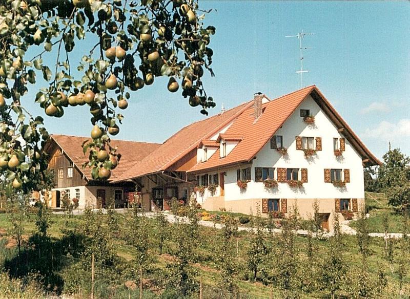Hausansicht, Ferienhof Karl Mesmer, Bodolz
