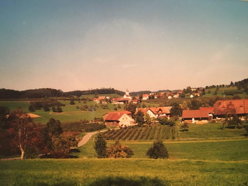 Umgebung, Ferienhof Karl Mesmer, Bodolz