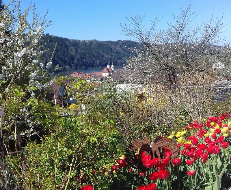 Frühling im Donautal