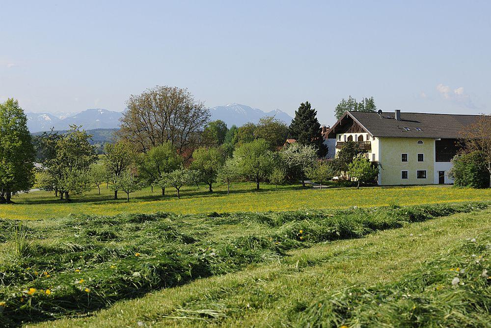 Köllhof (DE Höslwang). Appartement Ritte Ferienwohnung  Oberbayern