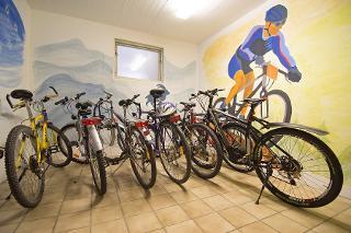 Gerne leihen wir Ihnen auch ein Radl oder Elektromountainbike - natürlich kostenfrei!