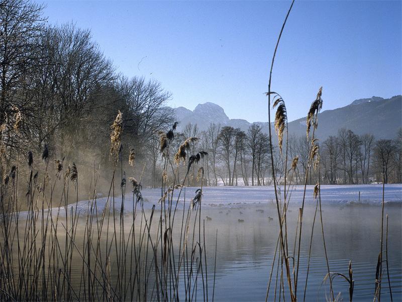 """Winterzauber: """"Hexennacht im Moor"""" - Eine Nacht- und Nebelaktion in Bad Feilnbach"""