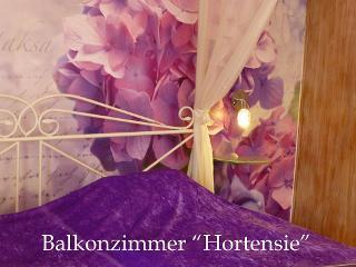 Detail, DZ Hortensie