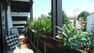 Balkonansicht1.jpg