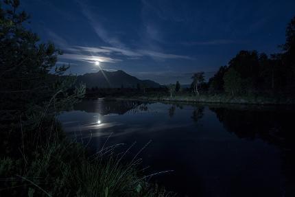 Vollmondspaziergang & Schlemmen bei Mondschein