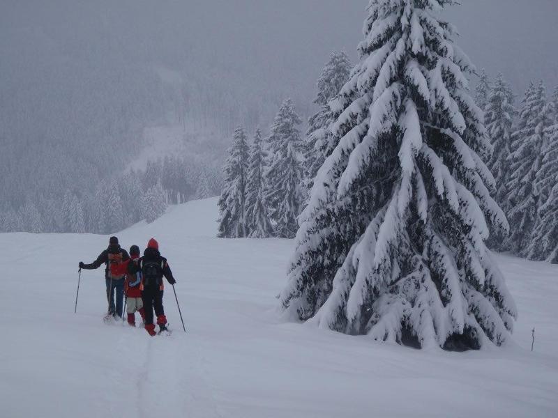Kleiner Berg mit Chiemseeblick - Einfache Schneeschuhwanderung