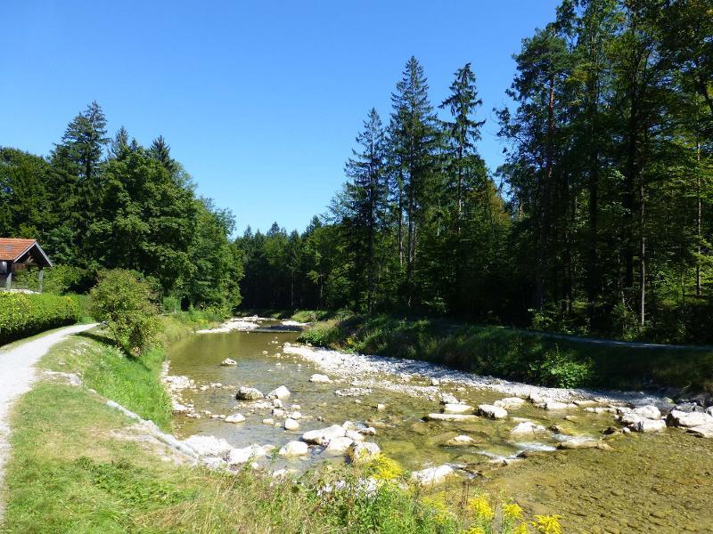 Natur-Heilkundliche Kräuterwanderung am Auerbach