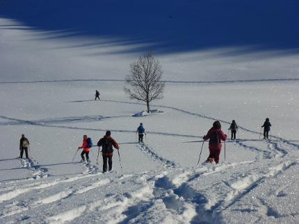 Frasdorfer Almenrunde - Einfache Schneeschuhwanderung