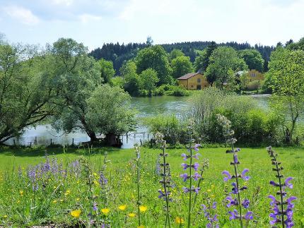 Radeln an den Ufern der Alz - begleitet von Geschichte und Malz