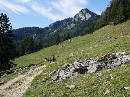 """""""Woid-Wanderung"""" - Waldwanderung durch den Aschauer Bergwald"""