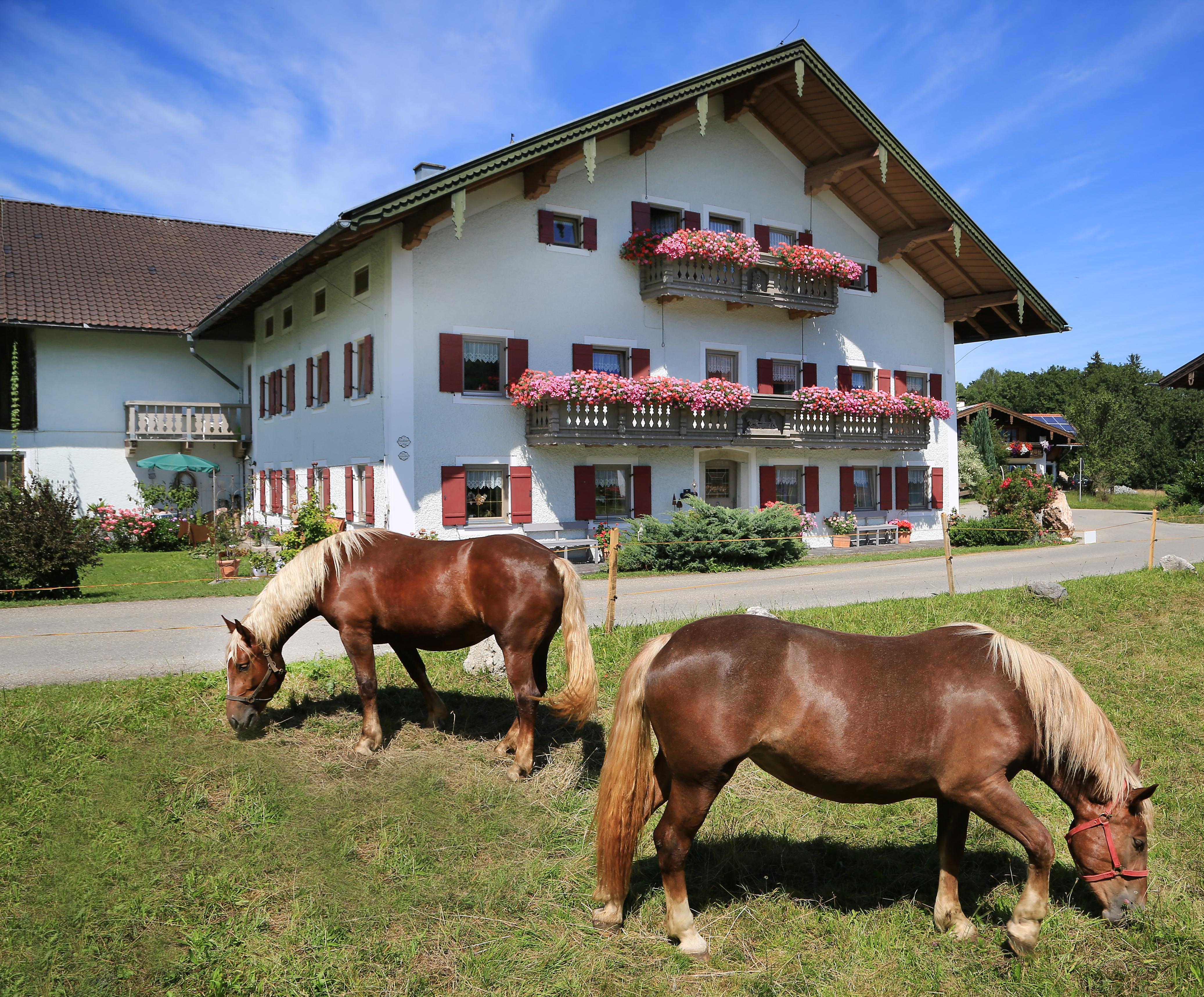 Heutauer Hof (DE Siegsdorf). Ferienwohnung 2, 100  Ferienwohnung  Oberbayern