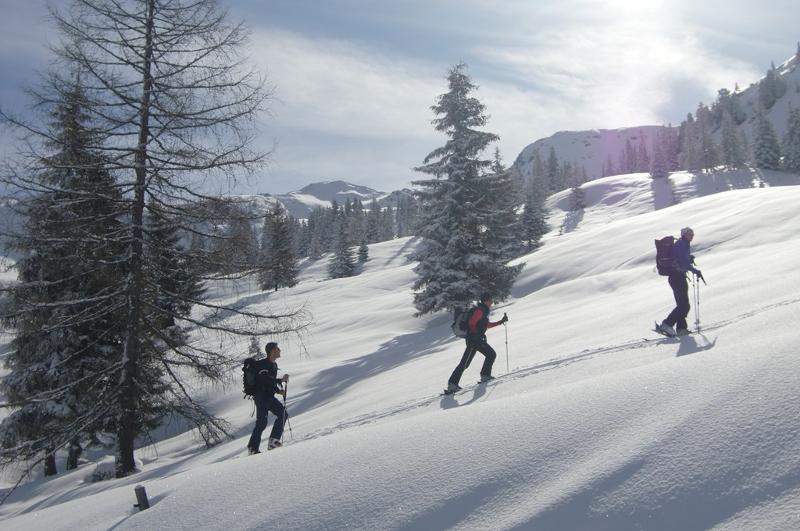 Schneeschuhgehen, Eisklettern und Skitour