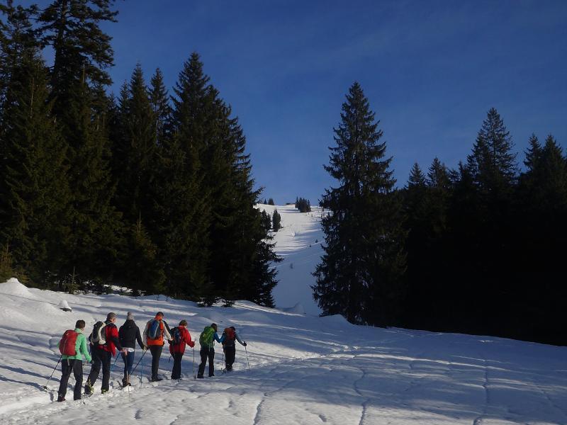 Zum Sonnenbankerl auf die Dürnbachalm - mittelschwere Schneeschuhwanderung
