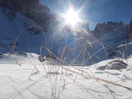 Skitouren Grundkurs - ein Wochenende im Schnee - Wochenendkurs für Skitouren Einsteiger