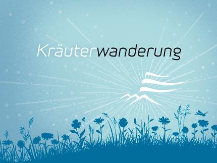 Kräuter- und Wildpflanzenwanderungen - Heilkräuter im September (Wurzeln und Samen)