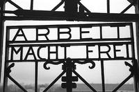 Dachau Memorial Tour (Concentration Camp Tour) Erwachsener