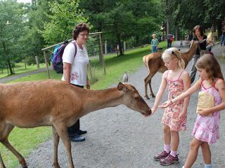 Naturzentrum Wildpark Knüll Fotos / Rechteinhaber: © Naturzentrum Wildpark Knüll